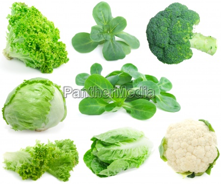 cabbage and green vegetable collection isolated