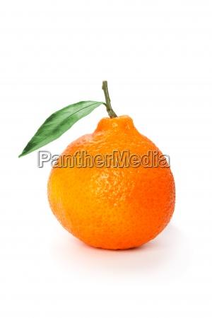 orange mandarins with green leaf isolated