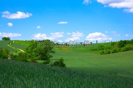 campo verde sul cielo blu