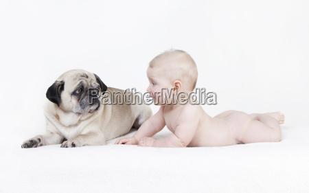 naked baby lies next dog