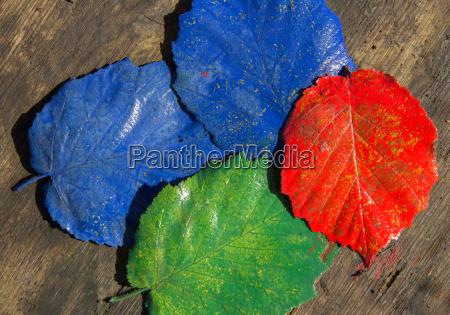 nte angemalte leaves