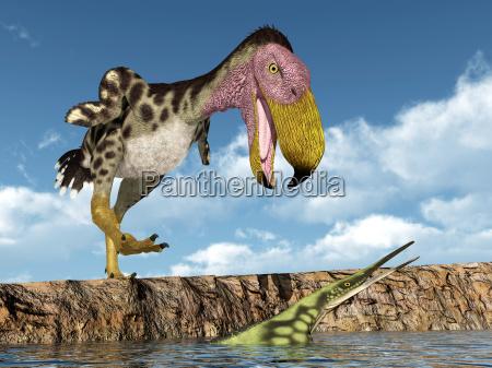 terrorvogel kelenken attackiert das meeresreptil hupehsuchus