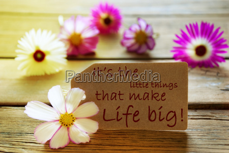 sunny label life quote its the