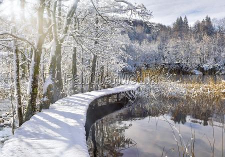 snowy laufsteg ueber den teich