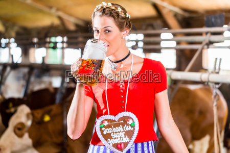 baeuerin trinkt bier im kuhstall
