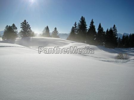 blue winter frost winter landscape blanket