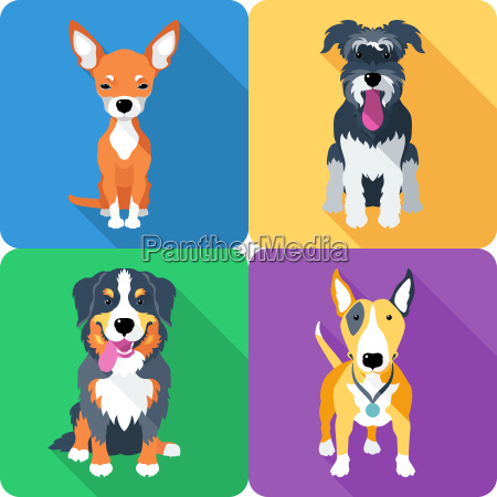 hund symbol flaches design