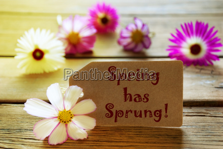 sunny label with text spring has