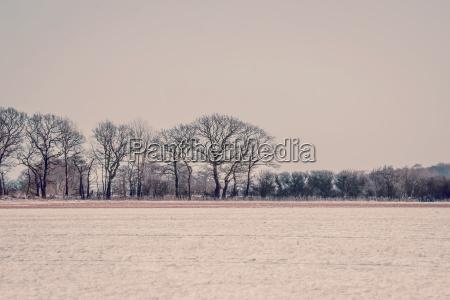 winter landschaft im violetten ton