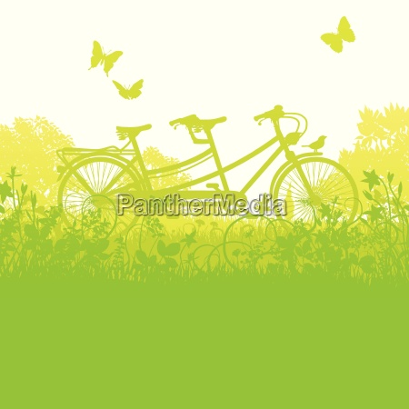 bicycle and tandem in spring