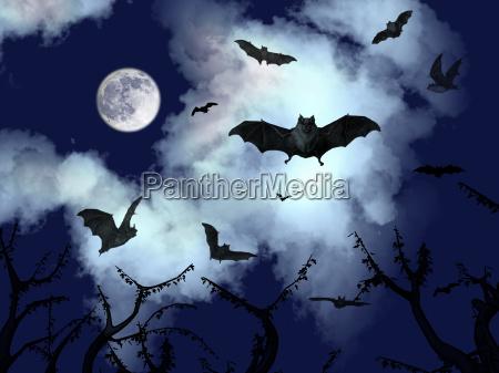 fledermaeuse im halloween nacht fliegen