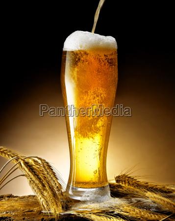becher bier