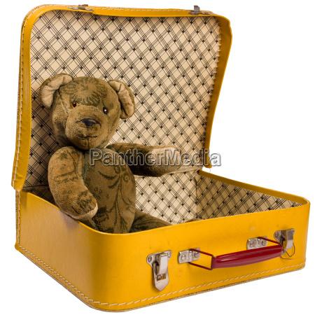 antiker teddy baer sitzt in einem