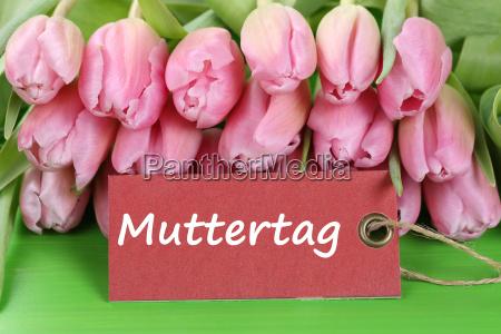 tulpen blumen zum muttertag mit karte