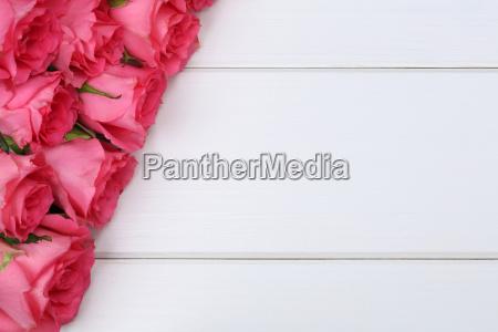 rosen blumen zum valentinstag oder muttertag