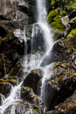 grizzly falls im kings canyon national