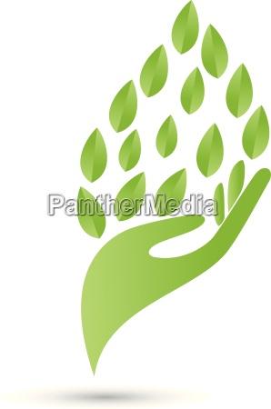 logo hand leaves naturopaths