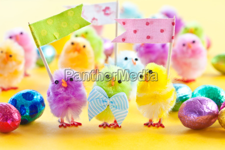 colorful chick for easter