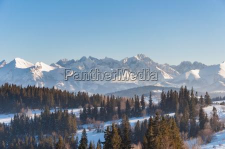 winterlandschaft des tatra gebirges