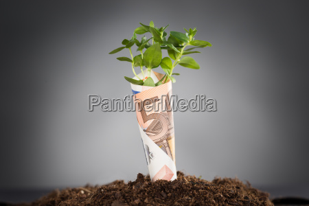 new business growth concept