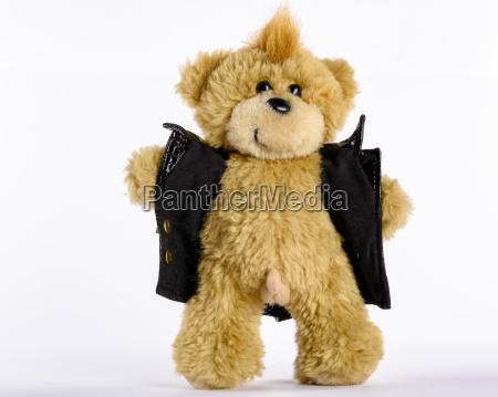 exhibitionist teddy der seinen penis zeigt