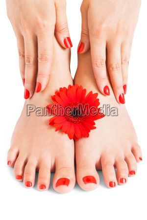 frau mit schoenen ordentlich gepflegten roten