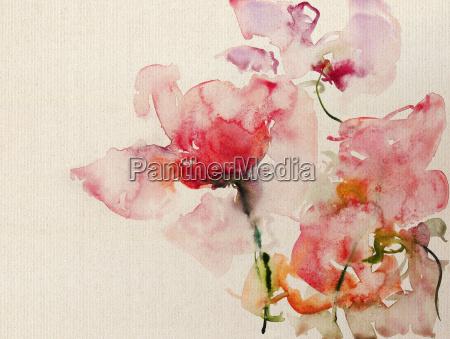 rosen aquarell leinwand