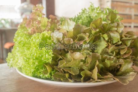 essen nahrungsmittel lebensmittel nahrung gemuese diaet