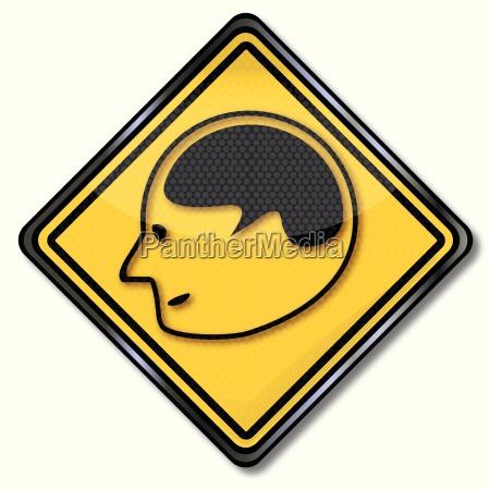 schildkopf brain and research
