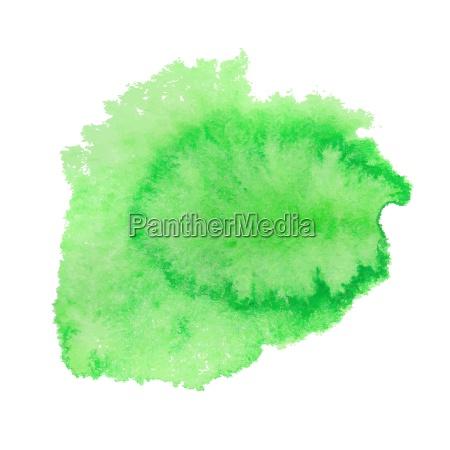 grüne, aquarell, fleck., vektor-illustration. - 13852401