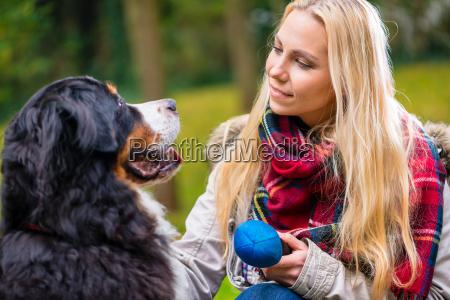 frau, spielt, mit, hund, im, herbst - 13880641