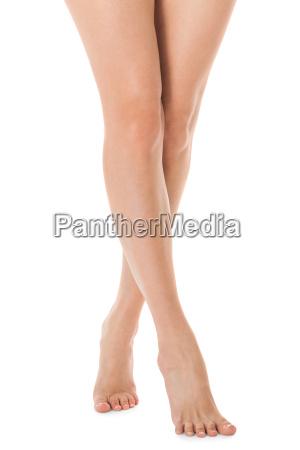 elegante lange wohlgeformte nackte weibliche beine