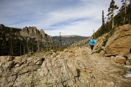 fahrt reisen baum nationalpark usa horizontal