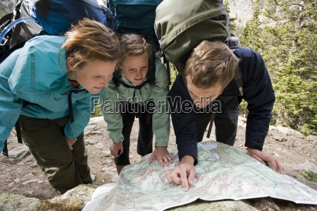 freundschaft fahrt reisen sport baum nationalpark