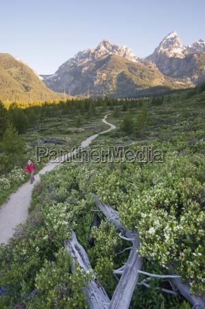 fahrt reisen nationalpark usa outdoor freiluft