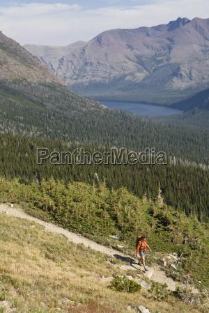 baum nationalpark usa outdoor freiluft freiluftaktivitaet