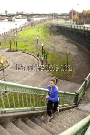 baum park bruecke usa steg outdoor