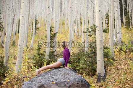 entspannung baum usa wohlfuehlen horizontal outdoor