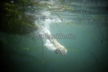 unterwasser schuss einer schwimmerhand neben gruenem