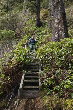 fahrt reisen baum nationalpark schritte schreiten