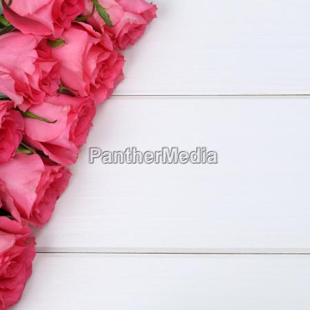 rosen blumen zum geburtstag oder muttertag
