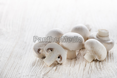 pilze champignons
