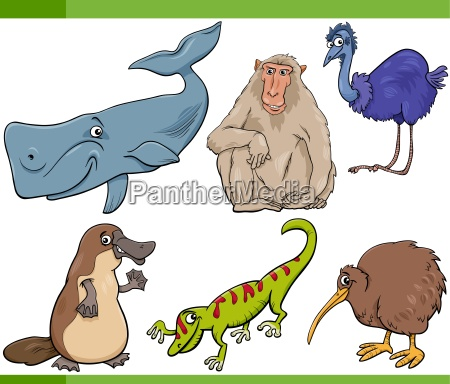 wilde tiere cartoon set illustration