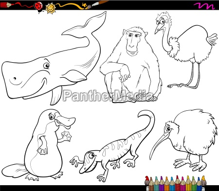 animals and food coloring page