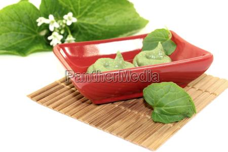 scharfer wasabi mit blatt und bluete