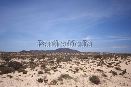 desert wasteland canary islands dune sands