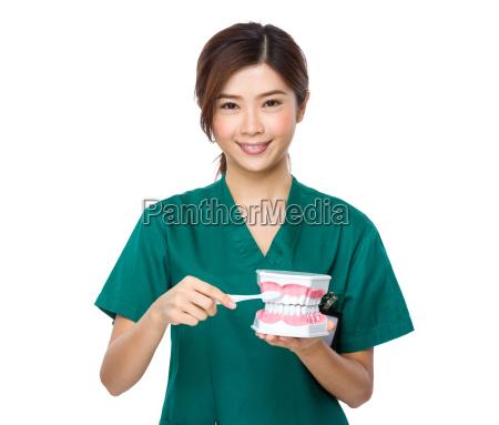 laechelnfrauen zahnarztdoktor unterrichten sie zaehne zu