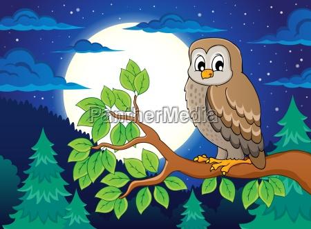 owl topic image 4