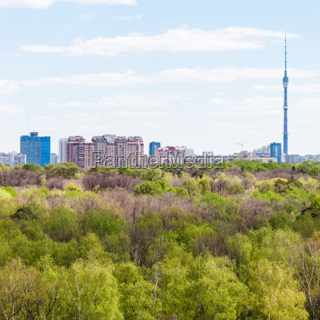 city and green woods in spring