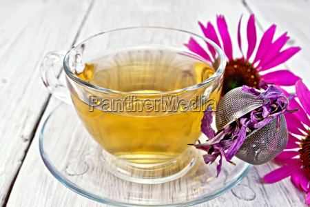 tea echinacea in glass cup with